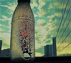 С бутылкой в дыре фотки
